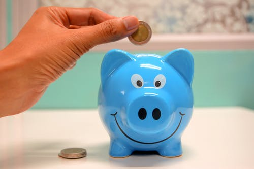 A PIG SMILES AND TAKES YOUR MONEY