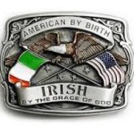 Group logo of Irish in the US
